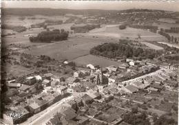 CP Pagny Sur Moselle Vue Panoramique Aérienne 54 Meurthe Et Moselle - Sonstige Gemeinden