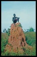 BISSAU - Monte De Baga-Baga ( Ed. Foto-Serra Nº 107)   Carte Postale - Guinea Bissau