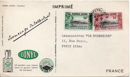Tarjeta Postal De Un Camaleon Circulada Con Publicidad. - Sierra Leona (...-1960)