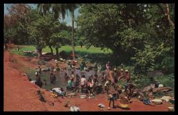 NOVA LAMEGO - LAVADEIRAS - - Lavadeiras Na Fonte ( Ed. Foto-Serra Nº 111)   Carte Postale - Guinea Bissau
