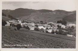 Weitersfelden  (FR) - Ohne Zuordnung