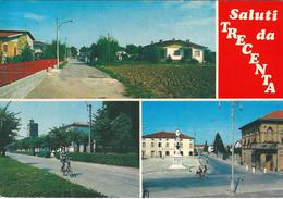 SALUTI DA TRECENTA (RO) - F/G - V: 1989 - Italia