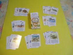 """Jeux 7 Familles  à Théme/Héron Maitres Cartiers/ """"Jadis Les Monstres""""/Gary/France/Vers 1990  CAJ19 - Group Games, Parlour Games"""