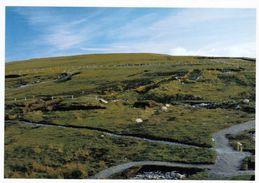 1 AK Irland Ireland * Céide Fields - Eine Archäologische Stätte Im County Mayo *