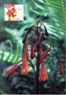 Australia 2007 Maxicard Scott #2613 50c Tasmanian Christmas Bell - Flowers - Maximumkarten (MC)