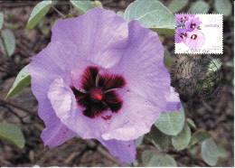 Australia 2007 Maxicard Scott #2615 50c Sturt's Desert Rose - Flowers - Maximumkarten (MC)