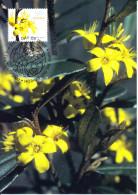 Australia 2007 Maxicard Scott #2616 50c Phebalium Whitei - Flowers - Maximumkarten (MC)