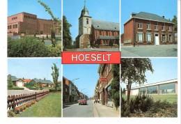 Groeten Uit Hoeselt (Limburg)-Multivues-Timbre Buzin: Vink-Pinson-Gorge Bleue-Blauwborstje-1990-scan - Hoeselt