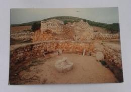 ALGHERO - NURAGHE PALMAVERA  (2071) - Sassari