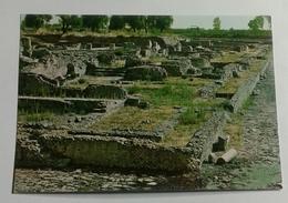 SIBARI - SCAVI ARCHEOLOGICI  (2099) - Cosenza