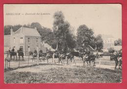 Zegelsem - Doortocht Der Lanciers ( Verso Zien ) - Brakel