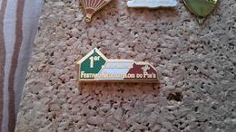 1 PINS  1 ER SALON DU PINS DE NEUCHATELOIS - Pin's & Anstecknadeln