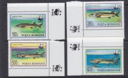 Romania 1994 WWF / Fishes 4v (corners)  ** Mnh (33684A) - Unused Stamps