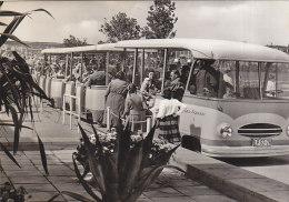 Erfurt - Gartenausstellung - IGA Garten Express Bus - Erfurt