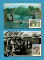 Algeria Algerie Algerien Oleiculture Olive Oliven Aceite Huile Production Carte MAximum Card On Photo Paper Papier Photo - Agriculture