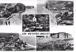 LES PETITES DALLES - France