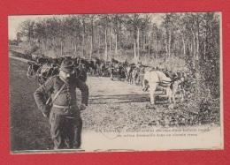 Conducteurs Et Chevaux D Une Batterie Lourde  En Alsace - Weltkrieg 1914-18
