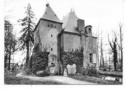Cpsm: 72 TORCE EN VALLEE (ar. Le Mans) Château Des Aulnays (rare) - Autres Communes