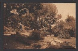 DF / 34  HERAULT / LAMALOU-LES-BAINS / PARC DE L'USCLADE / CIRCULÉE EN 1938 - Lamalou Les Bains