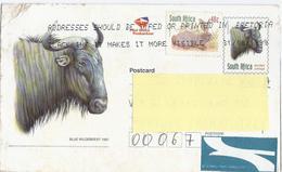 Postcard -1997 - Mi:ZA 895IIA - Südafrika (1961-...)