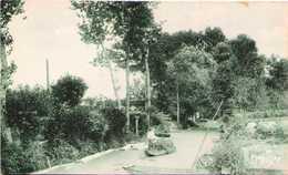 Le Marais Poitevin à SAINT-HILAIRE-la-PALUD - Canal De Montfaucon - Other Municipalities