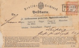 DR Karte EF Minr.14 R2 Waldheim 7.2.73 Gel. Nach Leipzig - Briefe U. Dokumente