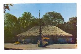 NOUVELLE CALEDONIE / NEUKALEDONIEN - Case Autochtone, 1962 - Neukaledonien