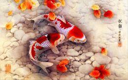 2016 China Koi Fish Postcards(No Pre-stamped) 10v - Pesci E Crostacei