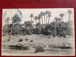COLOMB BECHAR La Palmeraie Et L'Oued + Cachet Militaire 2e Régiment De Tirailleurs Algériens - Bechar (Colomb Béchar)