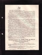 ELEWIJT JAMBLINNE Madeleine De MEESTER De BETZENBROECK Baronne André De JAMBLINNE De MEUX 1893-1936 Faire-part Décès - Décès