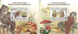 BURUNDI 2013 - Owls, Mushrooms. OFFICIAL Deluxe Sheets - Paddestoelen