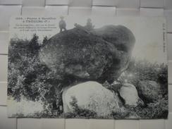 C P A ANIMEE TREGUNG PIERRE A SACRIFICE CIRCULEE  1910 - Trégunc