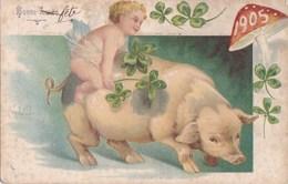 Belle CPA Gaufrée BONNE ANNEE 1905  ANGE Angelot Monté Sur Un COCHON VOEUX Chance TREFLES 4 Feuilles Timbrée - Pigs
