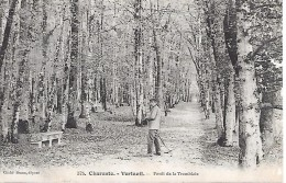 VERTEUIL - (  16 ) - Forêt De La Tremblaie - Unclassified