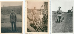 ALLEMAGNE WW2 LOT DE 3 PHOTOS SOLDATS Berger Allemand - Guerre, Militaire
