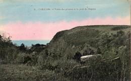 CAROLLES VALLEE DES PEINTRES ET LE PONT DU CRAPEX (PASSAGE DE LA MICHELINE) CARTE COLORISEE - France