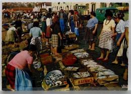 LISSABON   (wohl 1950er) - Portugal