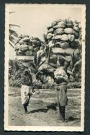 Dahomey - Porteuses De Noix De Coco. Benin - Dahomey