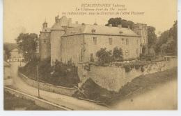 BELGIQUE - ECAUSSINNES Lalaing - Le Château Fort - Ecaussinnes