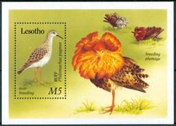 1989 Lesotho Uccelli Birds Vogel Oiseaux Block MNH** Sie104 - Lesotho (1966-...)