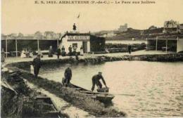 62 AMBLETEUSE - Le Parc Aux Huîtres - Très Animée - Autres Communes