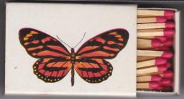 Boite D'allumettes  Papillon Lycorea Atergatis - Boites D'allumettes