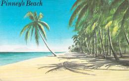 Saint-Christophe-et-Niévès /  St. Kitts & Nevis- PINNEY'S  BEACH *PRIX FIXE - Saint-Christophe-et-Niévès