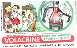 A V C/Buvard    Volacrine Castagné (N= 2) - Animaux