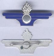 Insigne Du Service Du Matériel - Army
