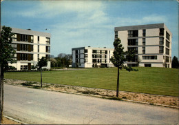 44 - MACHECOUL - Immeubles - Machecoul