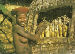 YOUNG ZULU MATRON, KRAAL, KWAZULU, NATAL, SOUTHERN AFRICA. - Südafrika