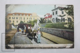 Early 20th Century Topic Transport Postcard - Ox Carriage In Madeira, Funchal 1912 - Other