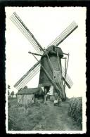 Arendonck (Arendonk)  :   Molen - Moulin  ( Beveren) - Arendonk