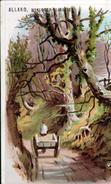 CHROMO ALLARD, HORLOGERIE BIJOUTERIE A MONTMORENCY, - Autres
